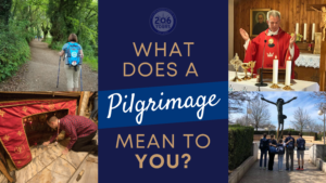 what does a pilgrimage mean 206 tours